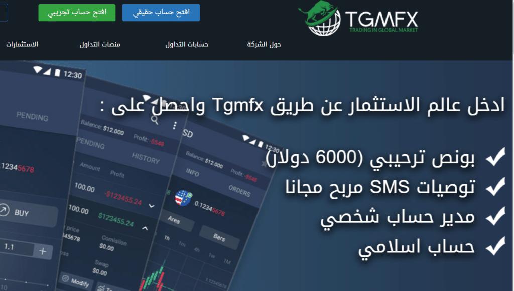 أفضل شركة لتوصيات التداول عبر الإنترنت في 2019 بالخليج العربي