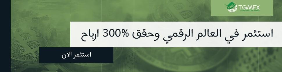 Ar_TGMFX_invest_set1_970x250