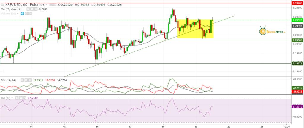 تحليل الريبل اليوم مقابل الدولار 19 مايو