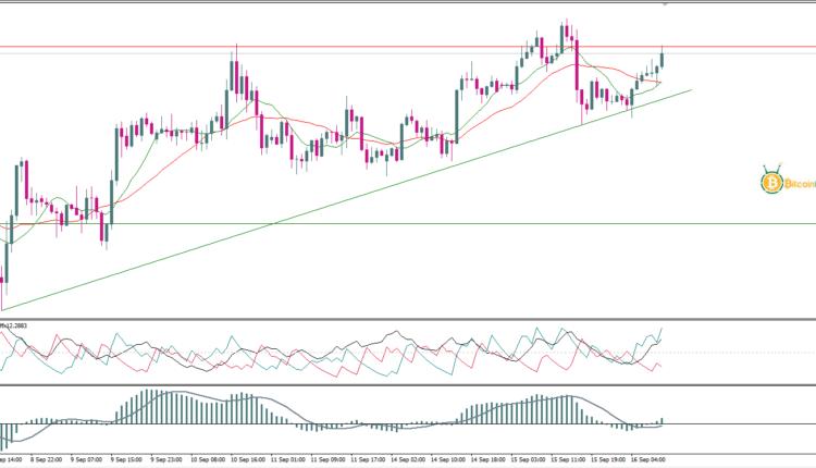 تحليل أسعار الذهب اليوم 16 سبتمبر   تحليل الذهب  تحليلات ...